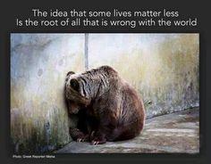 All God's creatures deserve respect