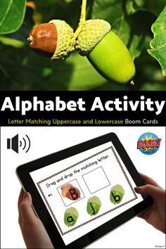 Fantastic activity for fall! Great for practicing letter recognition! #alphabet #letters Letter Matching, Vocabulary Cards, Uppercase And Lowercase, Letter Recognition, Alphabet Activities, Life Photo, Colorful Pictures, Speech Therapy, Special Education