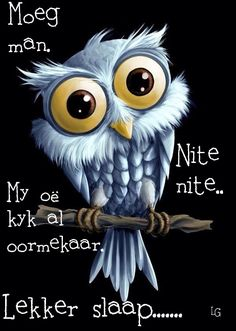 Evening Greetings, Goeie Nag, Goeie More, Afrikaans Quotes, Good Night Image, Good Night Quotes, Special Quotes, Day Wishes, Sweet Dreams