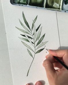 Here's a watercolor time-lapse by Skyla Design. You all know I love painting leaves and branches and I love how the circle adds that extra touch. Music by Nate Blaze Watercolor Circles, Watercolor Plants, Green Watercolor, Watercolor Leaves, Abstract Watercolor, Watercolor Illustration, Watercolour Painting, Simple Watercolor, Tattoo Watercolor