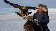 Eagle hunter Tugelbaya readies his bird for release - Provided by Financial Times