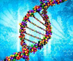 Nei geni della Sardegna il futuro per la prevenzione delle malattie ereditarie http://salutedomani.com/article/nei_geni_della_sardegna_il_futuro_per_la_prevenzione_delle_malattie_ereditarie_23322