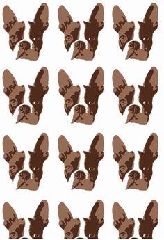 Boston Terrier Wallpaper Dog Adorable