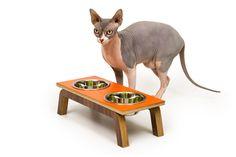 Diner elevated pet feeder from Modernistcat.com