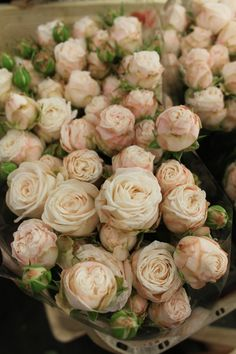Bombastic rose - this is our light flower (rather than ivory which can be a bit stark) it's a barely there pale peachy/pink tone.