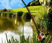 Jeu de Pêche Fishing Trip