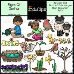 Signs Of Spring Clip Art Bundle from Educlips on TeachersNotebook.com -  (50 pages)  - Signs Of Spring Clip Art Bundle - Animals and Plants in Spring $4.95