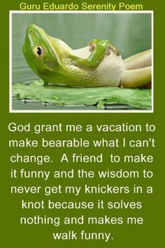 """Lol - """"...and the wisdom to never get my knickers in a knot because it solves nothing and makes me walk funny."""""""