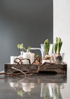 Styling: hyacinths on wooden tray