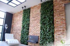 Jednolite wertykalne ogrody w połączeniu z cegłą - sierpień 2014 My Room, Shag Rug, Curtains, Nature, Garden Ideas, Beautiful, Home Decor, Design, Vertical Gardens