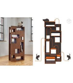 Awesome cat tree and book shelf in one!