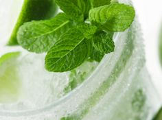 Glass of Mojito-Flavored Water Kefir- Mint, lime, and sweet-tangy water kefir. Skinny Taste, Fun Drinks, Yummy Drinks, Yummy Food, Cold Drinks, Healthy Drinks, Non Alcoholic Mojito, Alcoholic Beverages, Kefir Recipes
