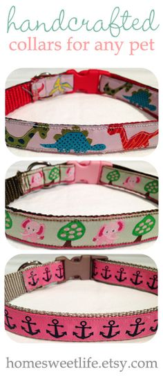 DIY Dog Collar