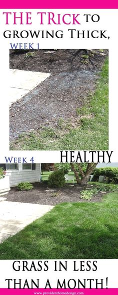 Not all grass growing methods are created equal. I learned that the hard way. Come find how to successfully grow grass the first time!  #LandscapingIdeas