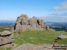 Walk Picture/View: Haytor Rocks in Dartmoor, Devon, England by Peter Royle (16)