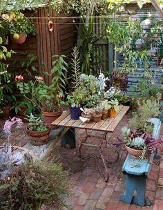 Small Courtyard Gardens, Back Gardens, Small Gardens, Outdoor Gardens, Small Terrace, Small Courtyard Garden Ideas Australia, Small Brick Patio, Brick Courtyard, Brick Paving
