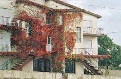 Apartment  Nazaré holidays surf Costa de Prata PORTUGAL pt-3-1
