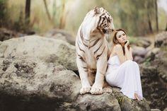 https://pixabay.com/es/la-naturaleza-mundo-animal-3106213/