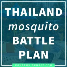 Mosquitoes in Thailand: How to avoid Thai mosquitoes, FAQs and tips for staying safe – Mosquitoes in Thailand are a big question, but protecting yourself is easy. Learn how to stay safe and avoid mosquitoes in Thailand with these simple tips. Click through to read more: http://www.kohsamuisunset.com/mosquitoes-in-thailand/
