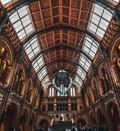 Natural History Museum, London Travel, London England, Lisbon, Travel Photography, Nature, Instagram, Naturaleza, Nature Illustration