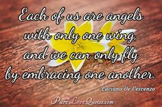 Each of us are angels with only one wing, and we can only fly by embracing one another. #purelovequotes