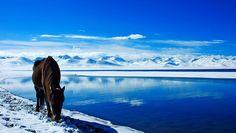 西藏  - Tibet