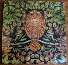 "From the ""Secret Garden"" book by Johanna Basford"". The Owl. Colored by Donna Leger #secretgarden #johannabasford"