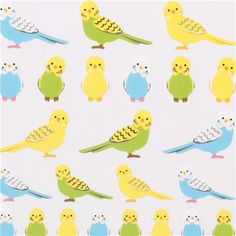 cute budgies and canary bird stickers from Japan
