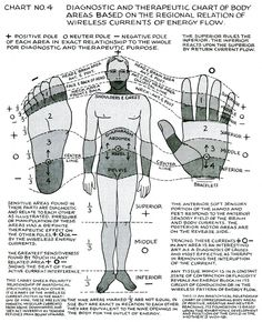 "lucifelle: "" Polarity Therapy Charts ""The Wireless Anatomy of Man"" Its neat to see this in chart form as we bring these concepts to life during massage. Chakra Meditation, Chakra Healing, Pseudo Science, Les Chakras, Endocannabinoid System, Spirit Science, Alternative Therapies, Qigong, Holistic Healing"