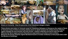 Fuck zioniste....plestinians camp....return 39.45...
