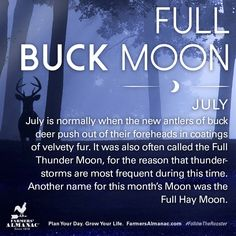 July's full Moon, like other full Moons, is rich in folklore and therefore was given many names. Watch our short video to learn the origin behind this full Moon's names: https://www.farmersalmanac.com/julys-full-buck-moon-17525 #fullmoon #folklore #legends #NativeAmerican #astronomy #stargazing