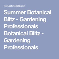 Summer Botanical Blitz - Gardening Professionals Botanical Blitz - Gardening Professionals Outdoor Planters, Flower Planters, Hanging Planters, Potted Plants For Shade, Thyme Plant, Front Yard Garden Design, Air Cleaning Plants, Winter Garden, Shade Garden
