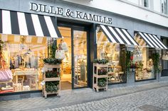 Dille & Kamille #Maastricht