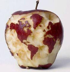 Globe apple & http://www.pinterest.com/aldaludick/orange-reds-the-colour-fire-and-brick/