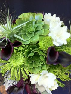 succulents, airplants calla lily and spider mums bridesmaids . - succulents, airplants calla lily and spider mums bridesmaids .