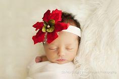 Poinsettia headband great for Braelyn  @Ashley Walters Crum Allsbrooks!!! so cute!