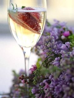 champagne & lilacs