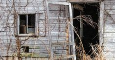 door-featured-final-980x512 Old Screen Doors, Old Doors, Cool Diy Projects, Upcycling Projects, Outdoor Projects, Old Door Decor, Cedar Hill Farmhouse, Repurposed Items, Repurposed Doors