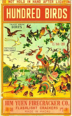 Hundred Birds