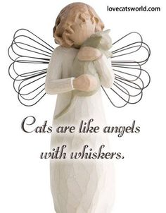 Cats are like angles with whiskers.