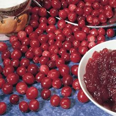 Growing American Cranberry - Additional Berry Plants - Plant Manuals - Stark Bro's