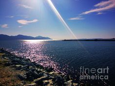 Touch Of The Sun At The Neretva Delta by Jasna Dragun