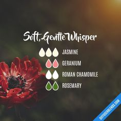 A relaxing blend for your evening. Essential Oil Carrier Oils, Jasmine Essential Oil, Essential Oil Scents, Essential Oil Perfume, Essential Oil Diffuser Blends, Doterra Essential Oils, Aroma Diffuser, Easential Oils, Aromatherapy Oils