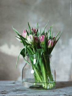 Comment conserver des fleurs coupées ? | BricoBistro