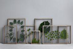 Blomsterpill ram från Moebe – Husligheter