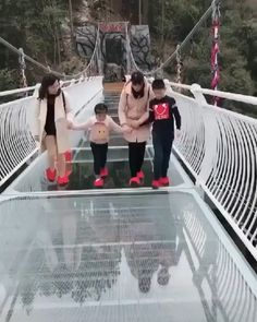 Be careful, it's dangerous here! – Viral X Gifs Funny Animal Videos, Funny Animal Pictures, Best Funny Pictures, Funny Photos, Funny Tips, Funny Kid Memes, Funny Cute, Hilarious, Hysterically Funny