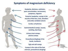 Low Magnesium Symptoms, Magnesium Deficiency Symptoms, Magnesium Benefits, Best Magnesium Supplement, Magnesium Supplements, Muscles Of The Neck, Cardiac Arrhythmia, Hair Loss Cure, Normal Blood