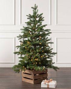 Potted Christmas Trees, Country Christmas Trees, Small Christmas Trees, Potted Trees, Christmas Porch, Farmhouse Christmas Decor, Christmas Mood, Xmas Tree, Christmas Crafts