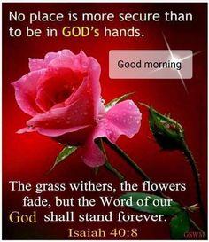 Good Morning Prayer, Morning Blessings, Good Morning Messages, Good Morning Greetings, Morning Prayers, Good Morning Quotes, Morning Gif, Night Quotes, Bible Verses Quotes