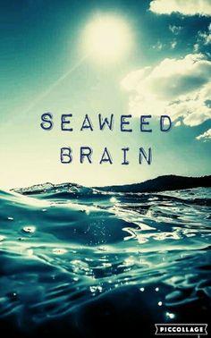 Seaweed Brain (Percy Jackson)